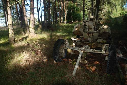 found an antiaircraft gun and metal ammo boxes in a forest....