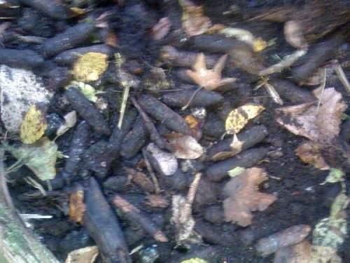 Help identifying Verdun relics