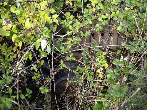 Tiger found in mud-Korsun/Cherkasy