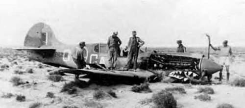 Curtiss-P40-Crash.jpg