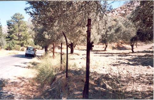 Click image for larger version.  Name:RA aircrafts structural elements  used as poles for fences in the fields.jpg Views:4 Size:93.8 KB ID:466696