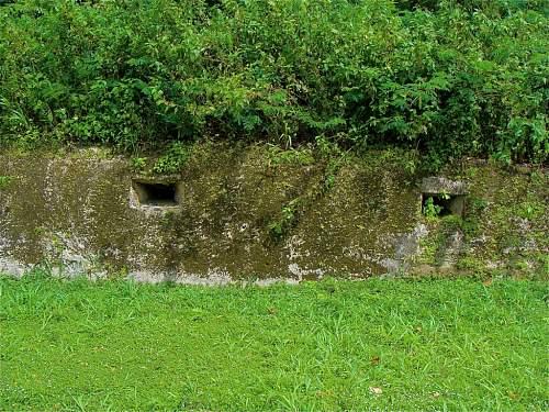 Click image for larger version.  Name:5 - Japanese bunker on West Road DSC03877.jpg Views:6 Size:189.8 KB ID:527515