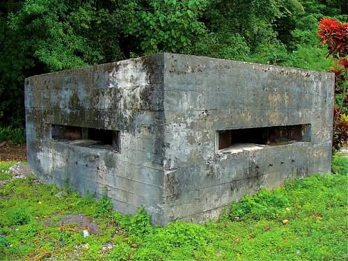 Click image for larger version.  Name:5 - Japanese bunker on West Road DSC03882.jpg Views:7 Size:158.4 KB ID:527516
