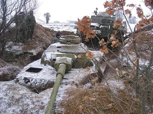 german tank (28).jpg