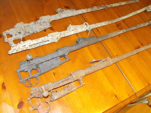 Somme found rifles g98?