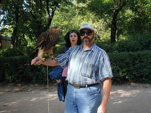 Click image for larger version.  Name:Hawk.jpg Views:353 Size:249.5 KB ID:76760