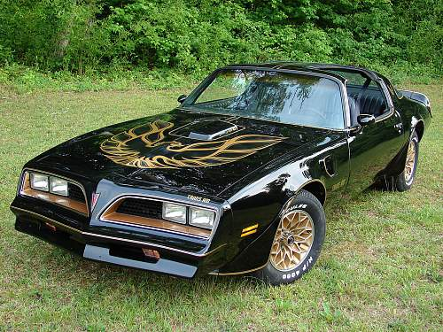 Click image for larger version.  Name:1978_pontiac_trans_am-pic-15658.jpg Views:94 Size:338.9 KB ID:918343