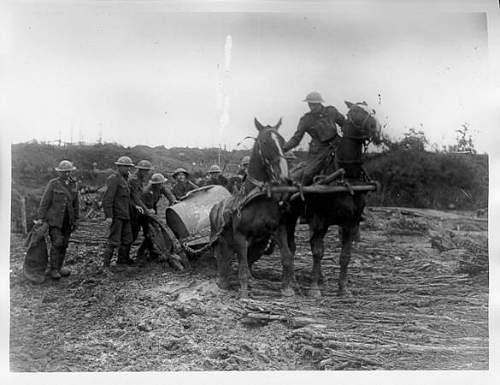 Great War Horse Breast Harness