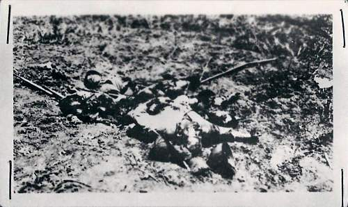 Click image for larger version.  Name:Dead Soldier 3_1600x955.jpg Views:4 Size:218.3 KB ID:245459