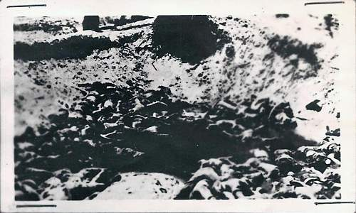 Click image for larger version.  Name:Mass Grave_1600x960.jpg Views:1 Size:199.3 KB ID:245462