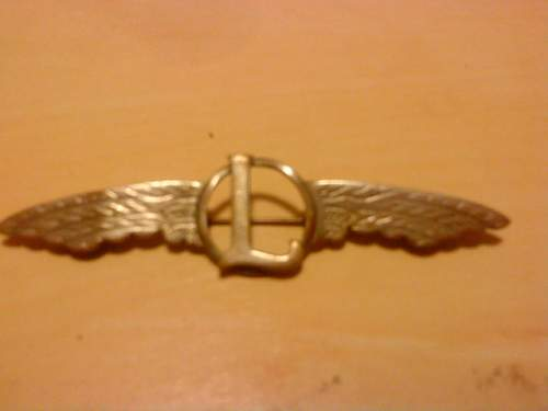 Unknown Pilots badge?