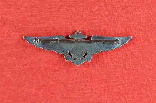 US Pilot Badge what is it.