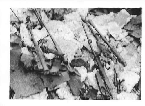 munich 1967 004.jpg