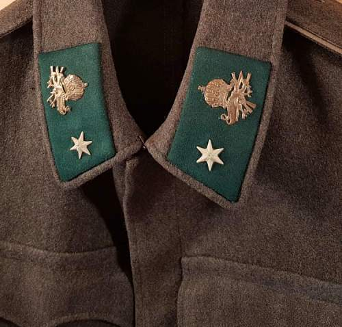 Which kind symbol is that one on the collar?
