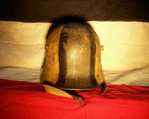 Austrian camo helmet