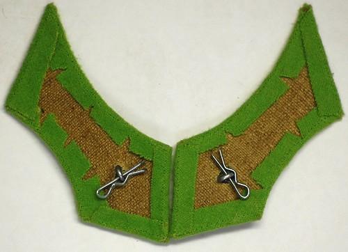 WWI Austrian collar tabs?