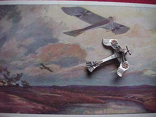 Click image for larger version.  Name:WW1PLANE1.JPG Views:119 Size:59.1 KB ID:121816