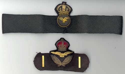 . . . More 1918 raf insignia