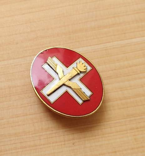 Unknown Swiss Badge Wings and Torch! Imposible to Identify