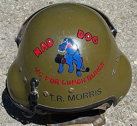 240th AHC Maddog Flight Helmet