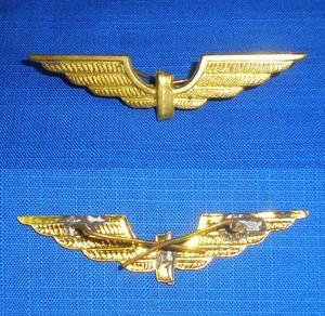 UNIDENTIFIED  pilots wings any ideas ...