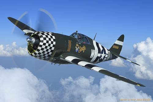 Click image for larger version.  Name:dux13eagle_2.jpg Views:80 Size:181.2 KB ID:556028