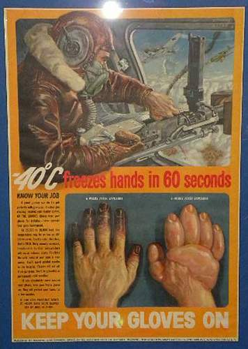 Click image for larger version.  Name:gloves.jpg Views:42 Size:82.4 KB ID:583743