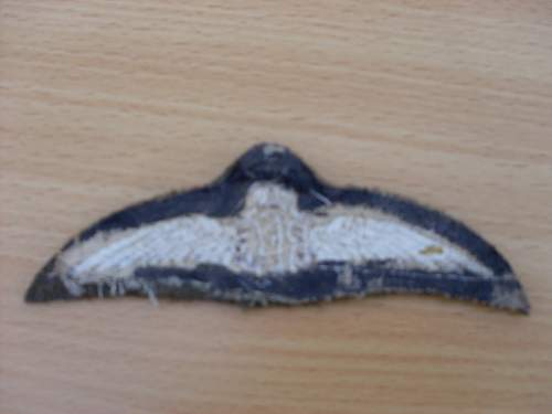 Click image for larger version.  Name:rfc wings 005.jpg Views:98 Size:35.6 KB ID:671370