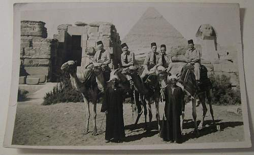 Click image for larger version.  Name:Cairo post card photo -probably Nov 1942 DSC01906.jpg Views:923 Size:164.0 KB ID:71706