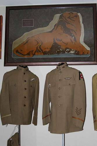 258th  Aero Squadron Fabric
