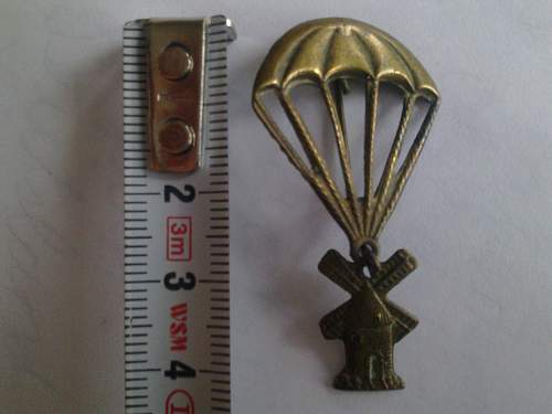 unknown para-badge or wing?