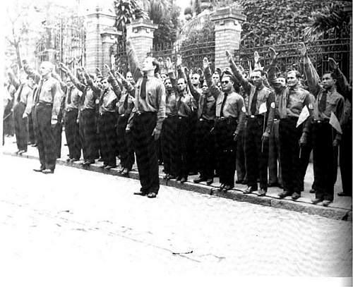 Brazilian's Nazi-Facist inspired pins