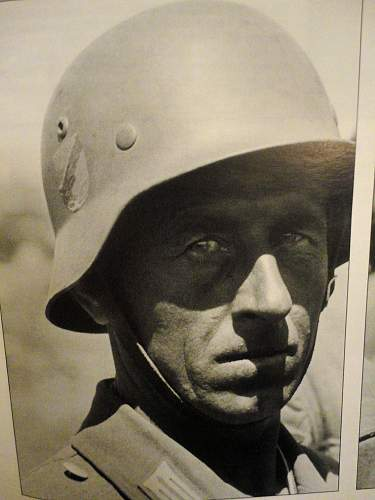 Click image for larger version.  Name:Helmet cossack Decal Right side 1.jpg Views:447 Size:55.6 KB ID:588078