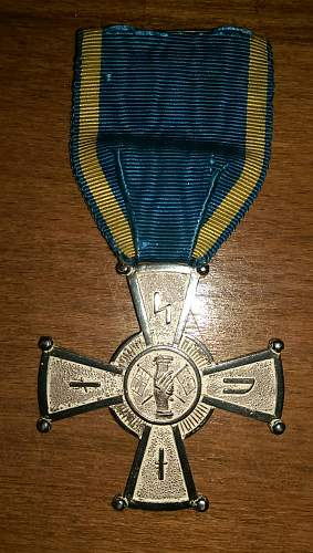 Unknown medal .....can anyone ID please ?? volunteers ?? Axis ??