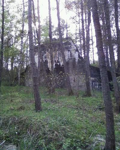 1944-45 battlefield relics.