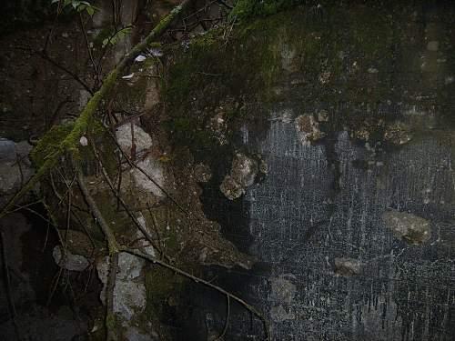 Hurtegen Forest