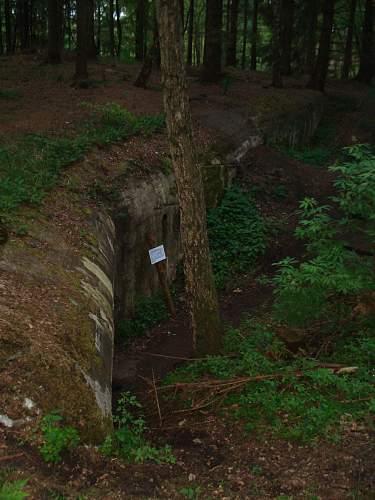 bunker by night 088.jpg
