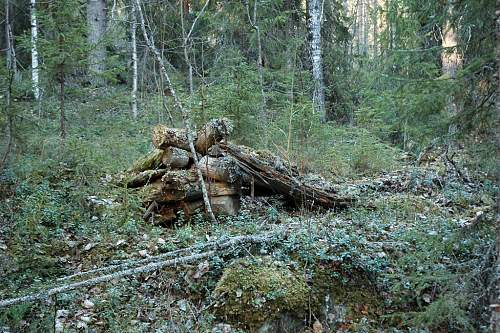 Battlefields in North Karelia( SS-Nord Division)