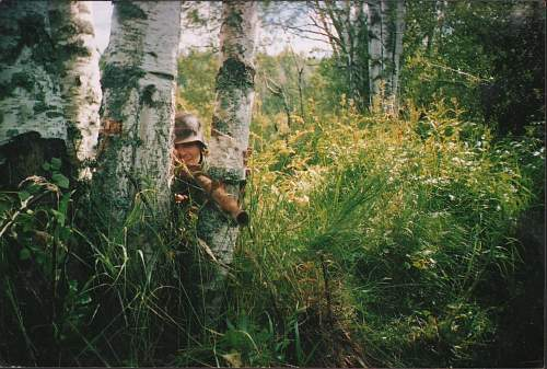 From Russian forests...3