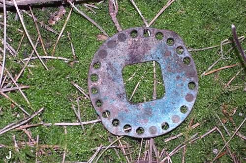 Brass Wheel wrf800.jpg