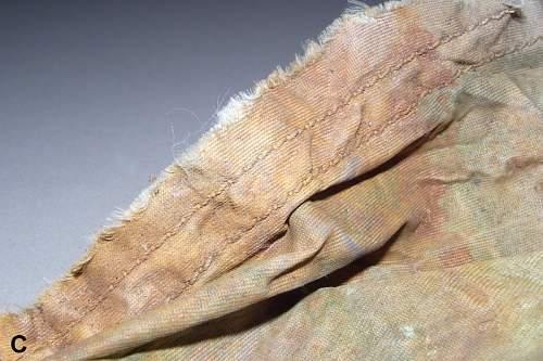 Parachute Silk (Detail) wrf800.jpg