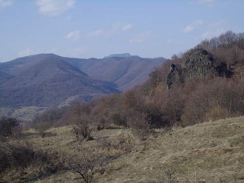 Primavara pe dealul Filei (Fagetel).jpg