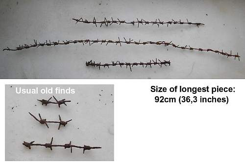 New (prickly) finds from my WW2 site(s), please help ID some other.