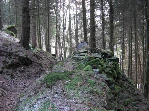 Ardennes front - Losheimer area