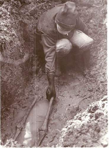 digging late 80's.jpg