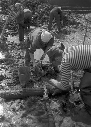 digging late 80's (35).jpg