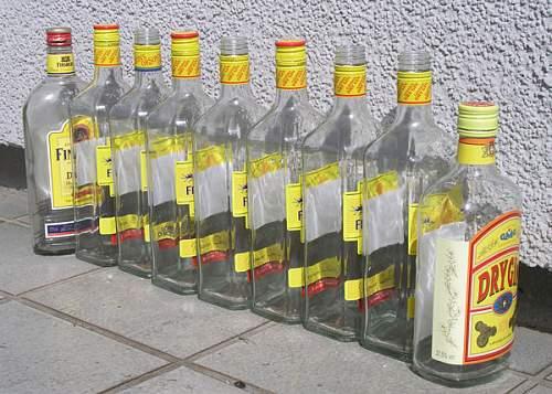 9_empty_bottles_of_gin_in_a_row.jpg