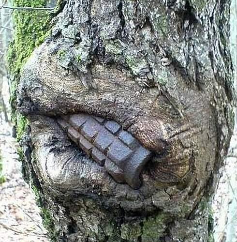 grenade-tree.jpg