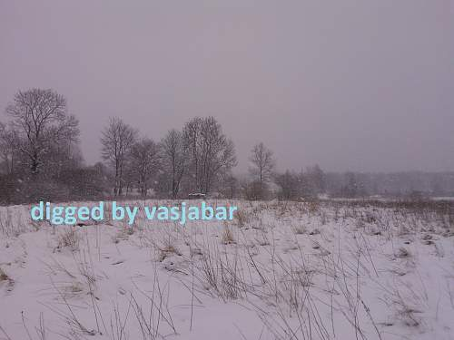 WP_000456.jpg