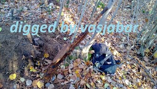 WP_20131015_003.jpg
